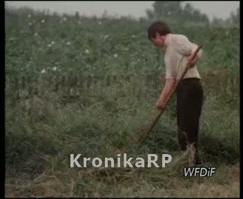Młode ręce dla rolnictwa