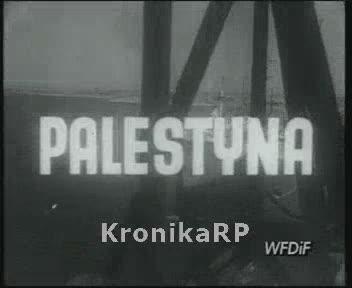 Z całego świata. Palestyna
