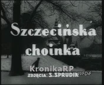 Szczecińska choinka