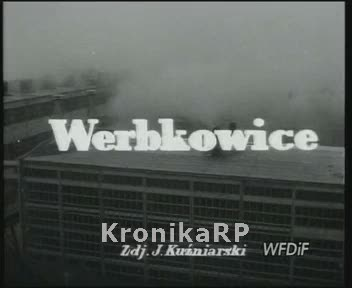 Werbkowice