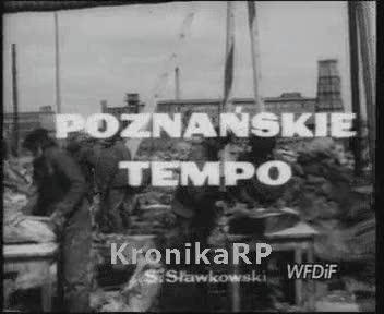 Poznańskie tempo