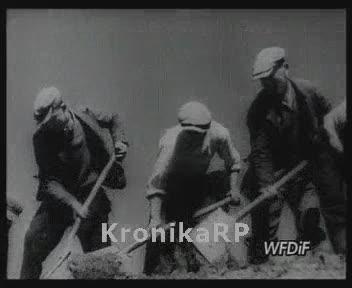 Siły na zamiary - historia COP-u