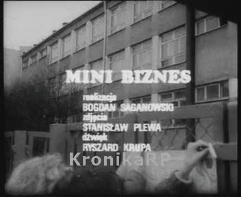 Minibiznes