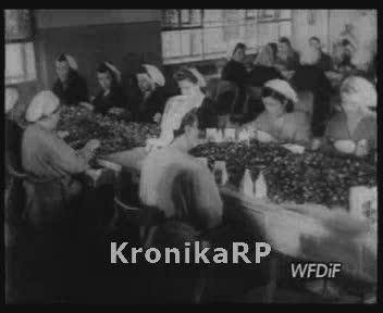 Wytwórnia Cukrów w Warszawie d. E. Wedel