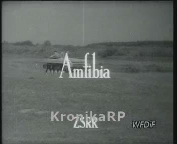 Amfibia