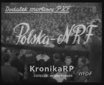 Boks Polska - NRF w Warszawie