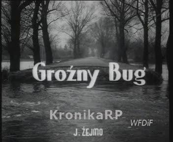 Groźny Bug