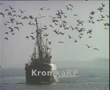 Kasacja kutrów rybackich